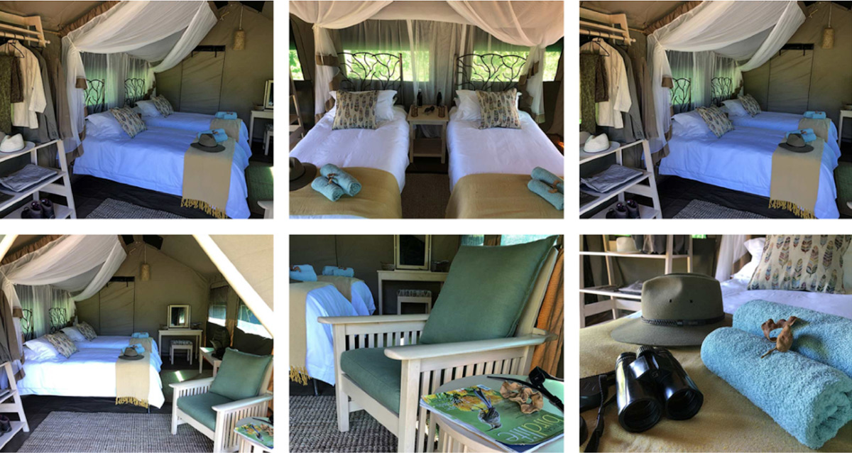 Stretch Safari Camp tents with bed